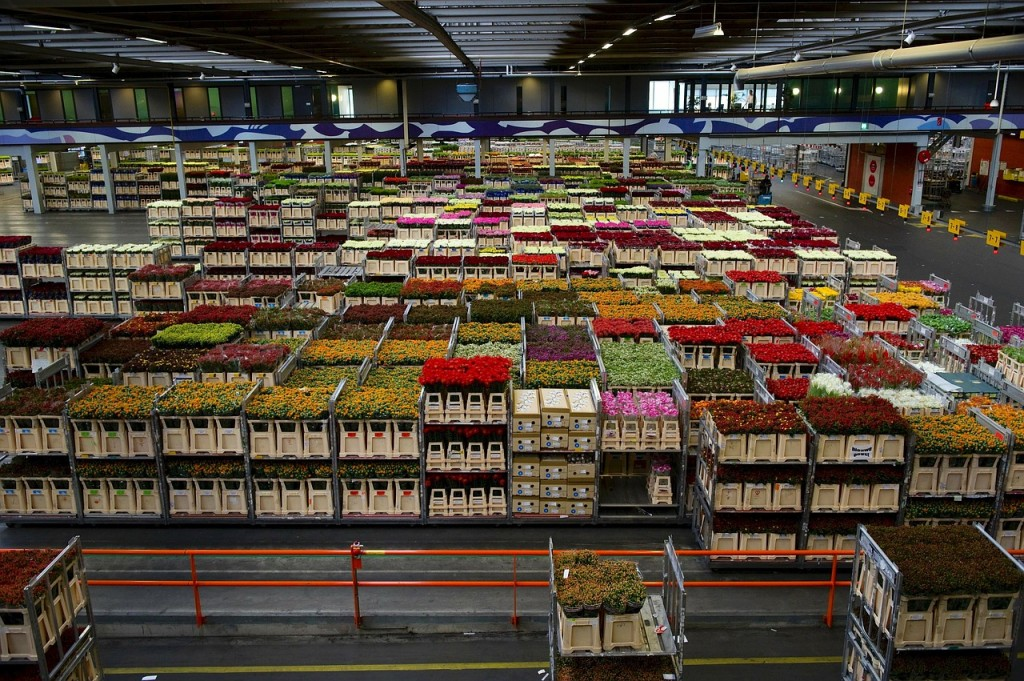 How Inventory is Valued: From an Accountant's Perspective